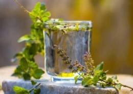 8 Health Benefits of Tulsi Leaves